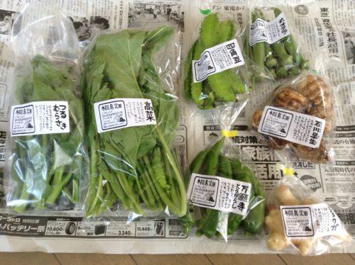 野菜のパッケージ事例