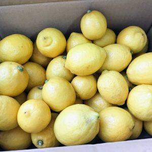 食べチョク レモン